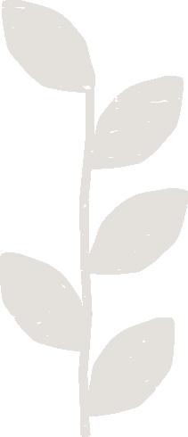 fenn foods leaf